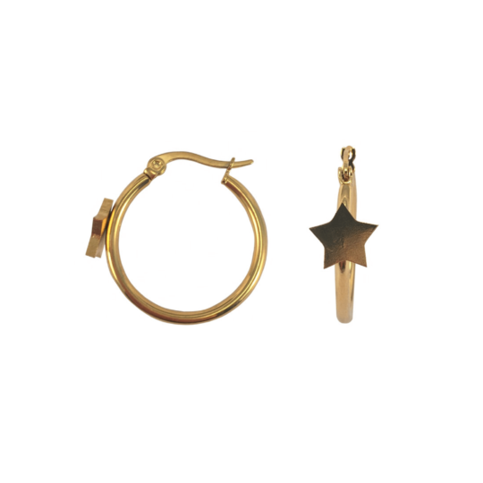Gouden oorringen ster